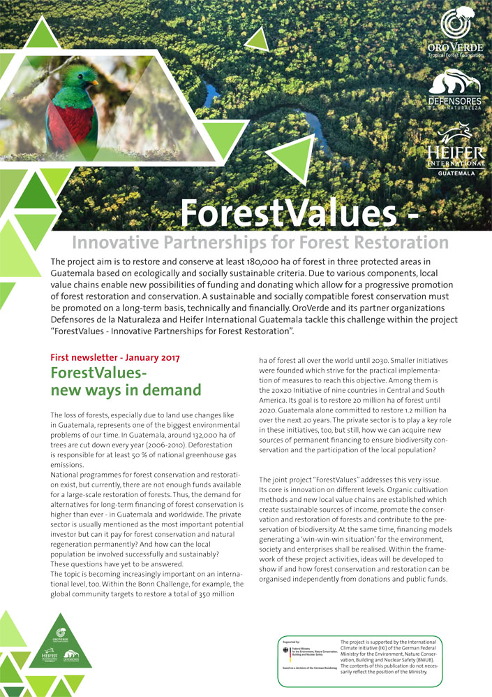 Forest Values - OroVerde-Project-Newsletter1