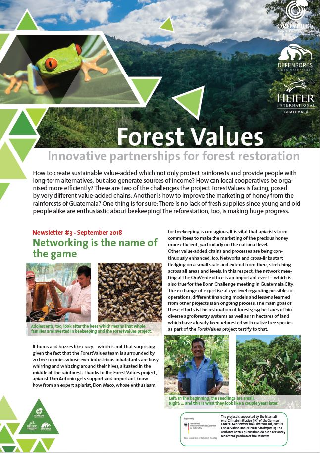 OroVerde-Project Forest Values-Newsletter3