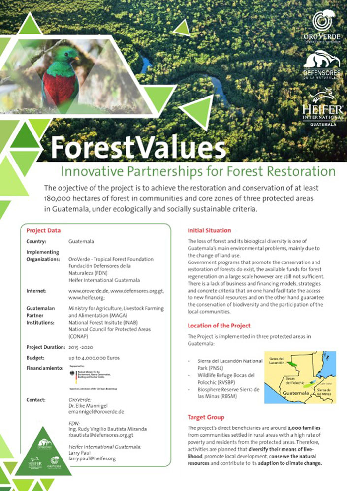 Forest Values - project from OroVerde