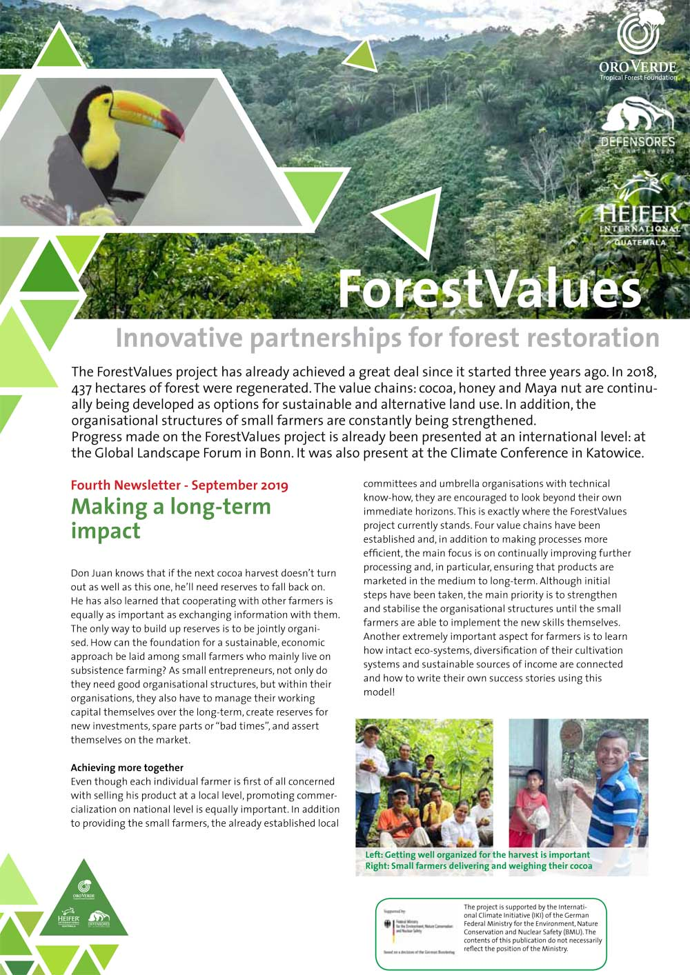ForestValues - News
