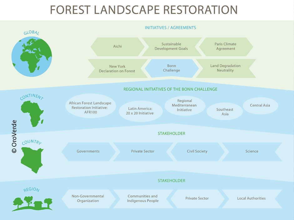 Forest Landscape Restoration Layer Model ©OroVerde