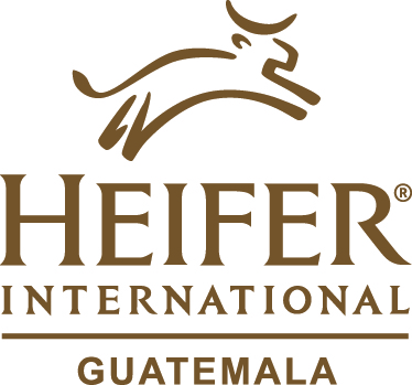 Heifer International Guatemala