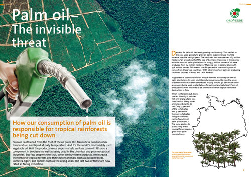 Palmoil - the invisible treat - A factsheet by OroVerde