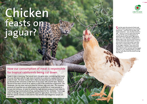 Chicken - Feasts on Jaguar - Factsheet by OroVerde