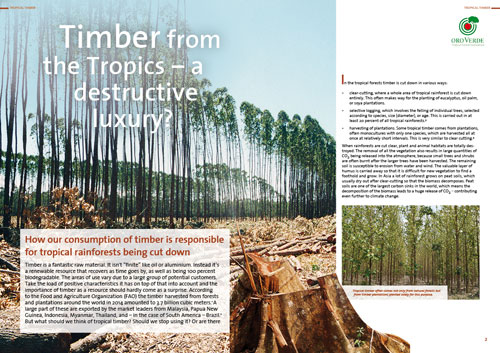 Timber from the Tropics - A destructive luxury? - Factsheet by OroVerde